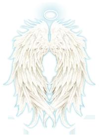 angel readings and mediumship